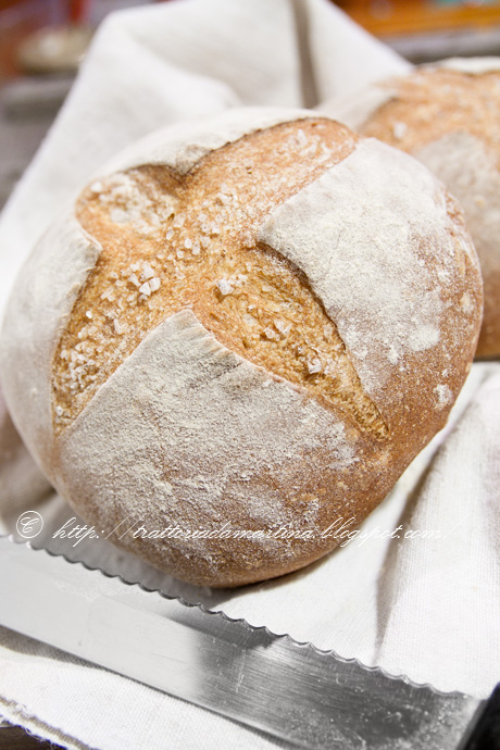 Pagnottine di pane croccante