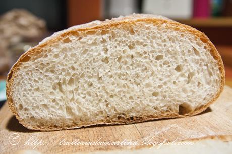 Pagnottine di pane