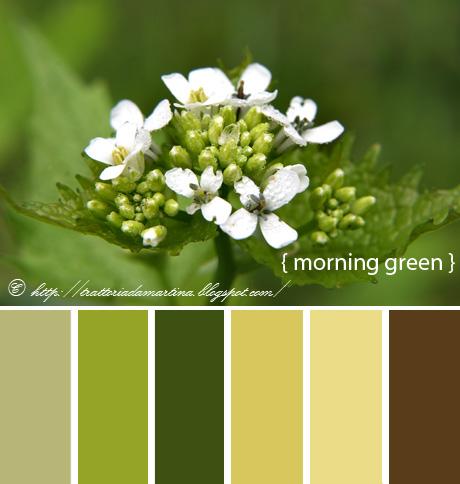 Buona domenica e un'idea colorata