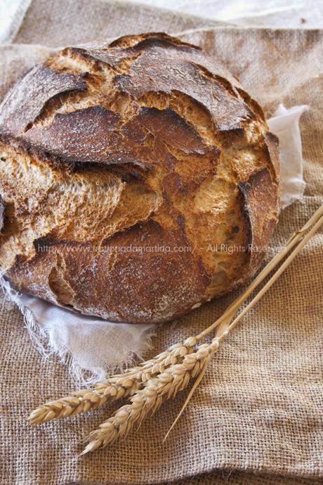 Pane senza impasto con farina tipo2, farina integrale e semi di girasole