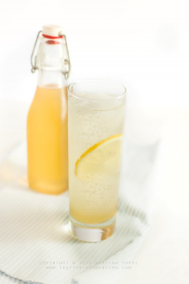 Lemonsoda fatta in casa