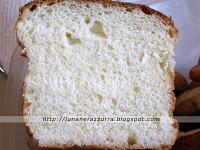 brioche alla crema pasticcera (14) copia