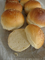 panini da hamburger (2) (1)