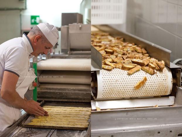 Biscotti di Prato in lavorazione